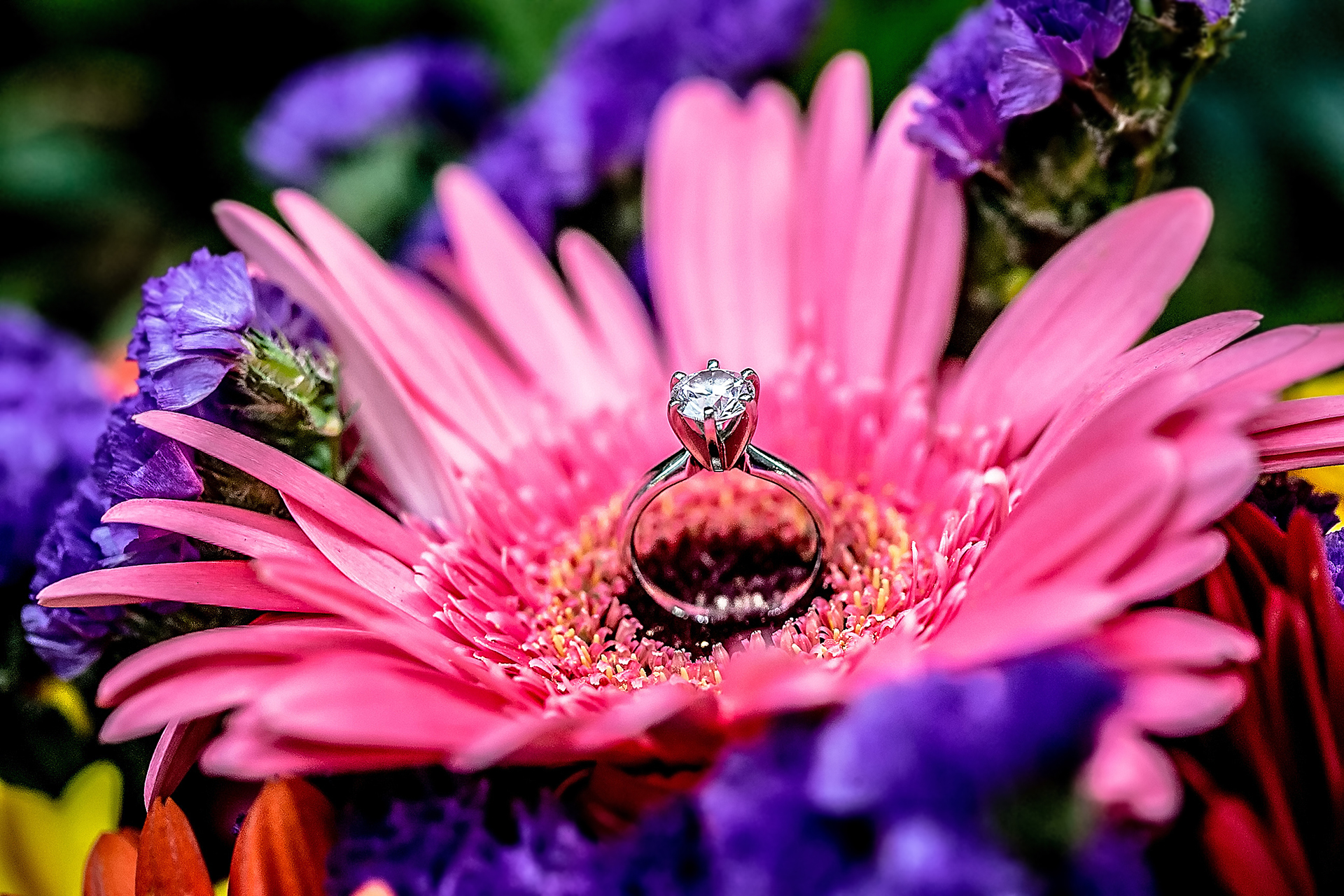 Engagement ring on a pink flower