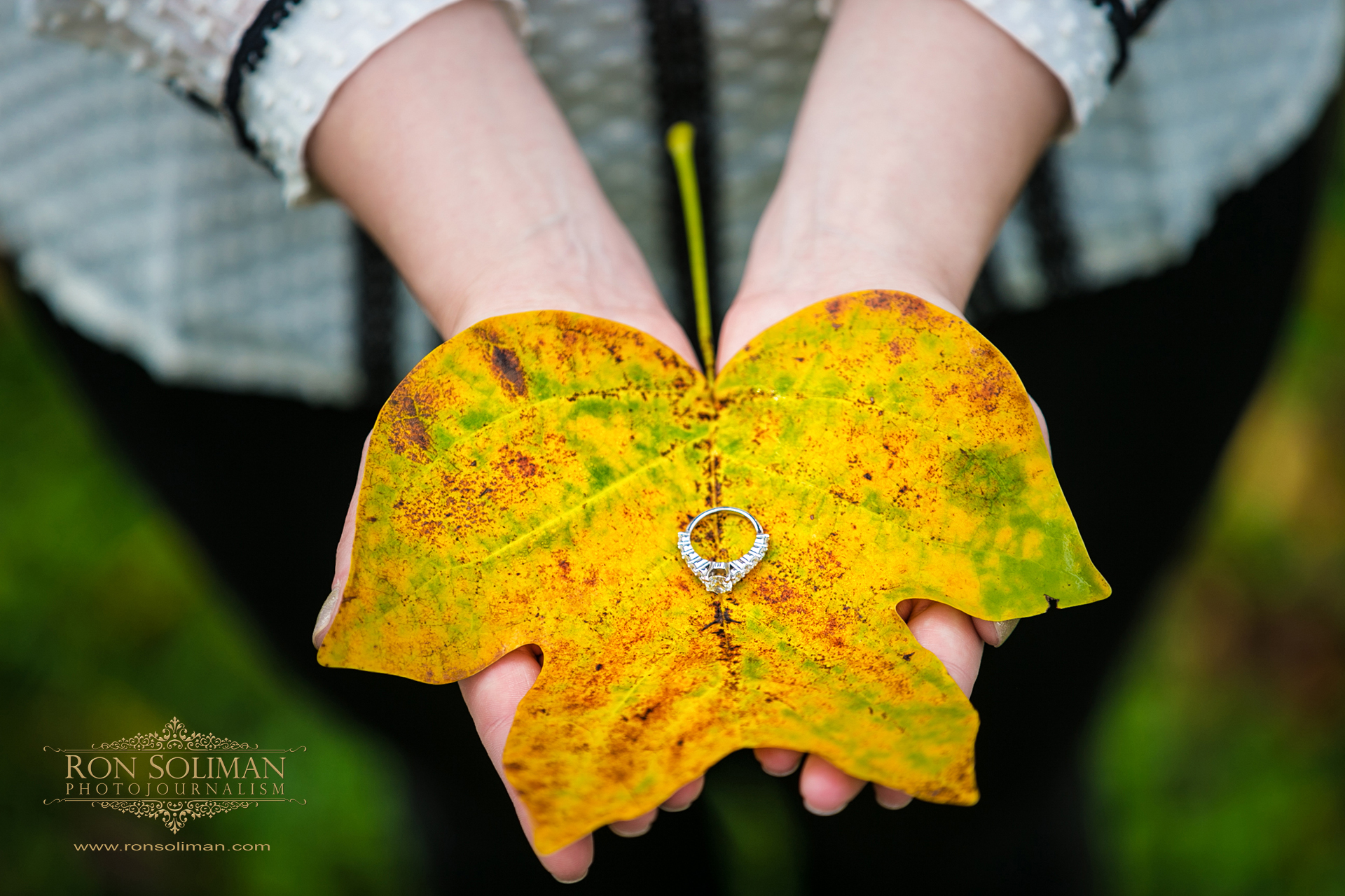 FALL ENGAGEMENT 2