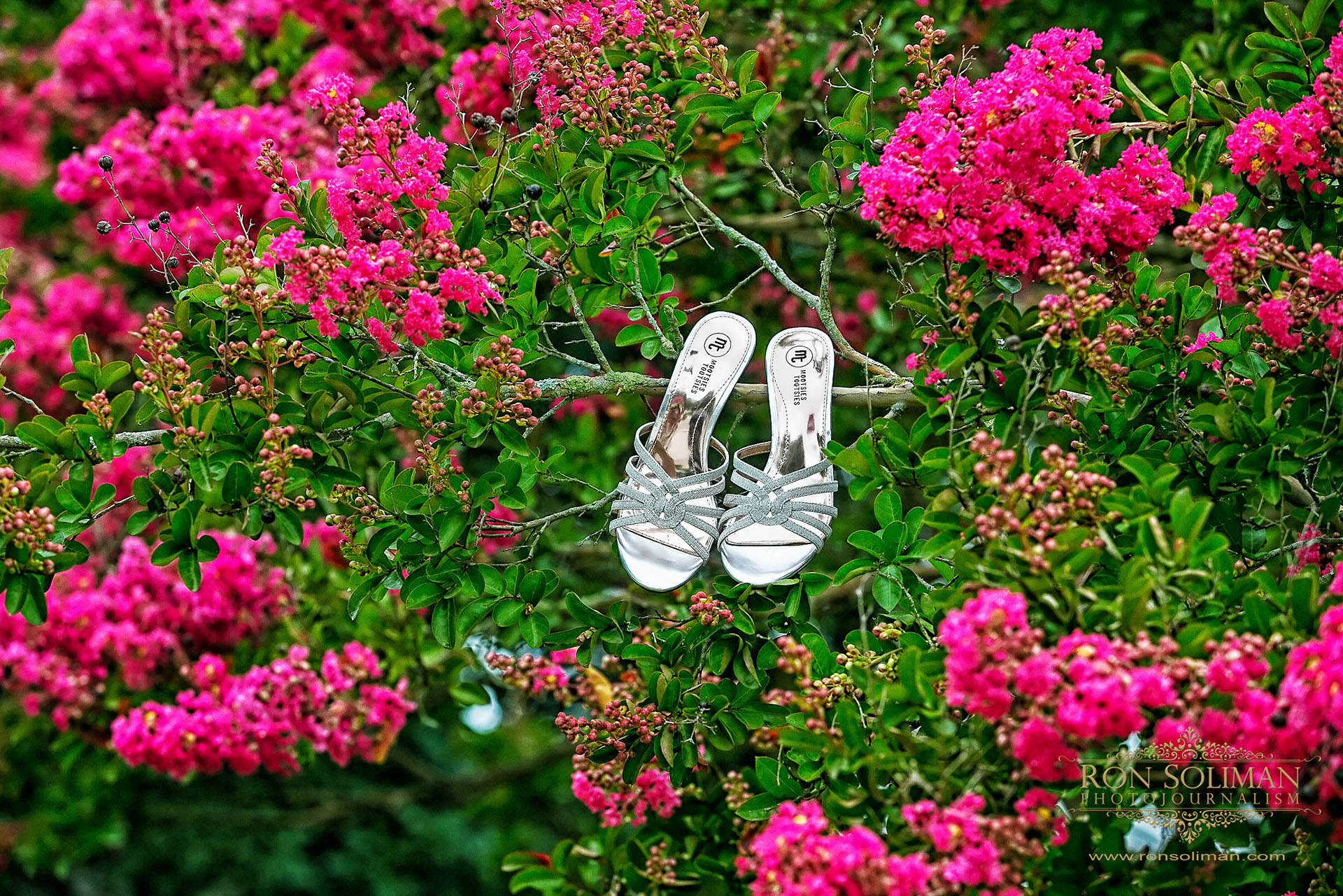 flowers around wedding shoes