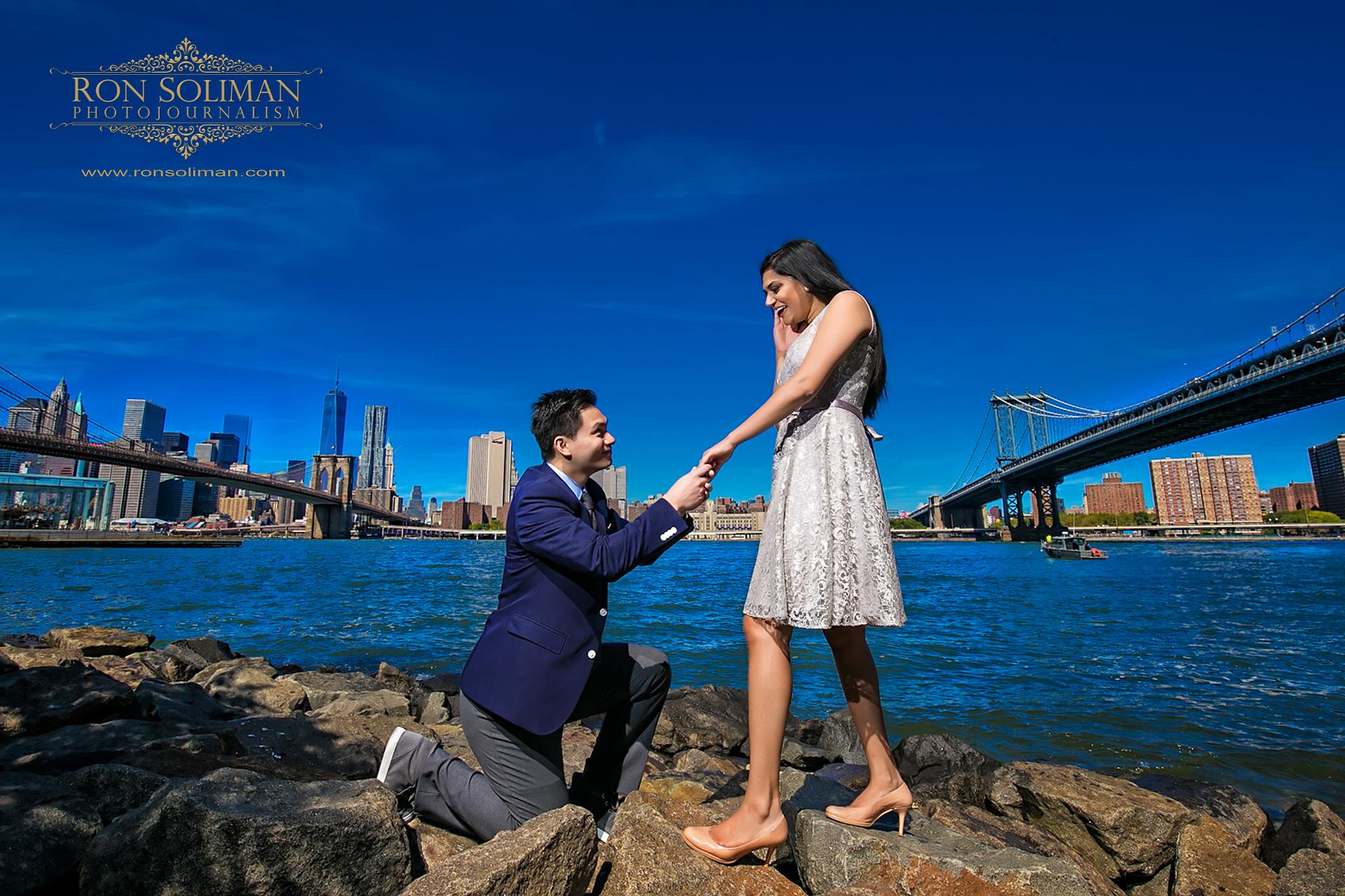 dumbo engagement photo
