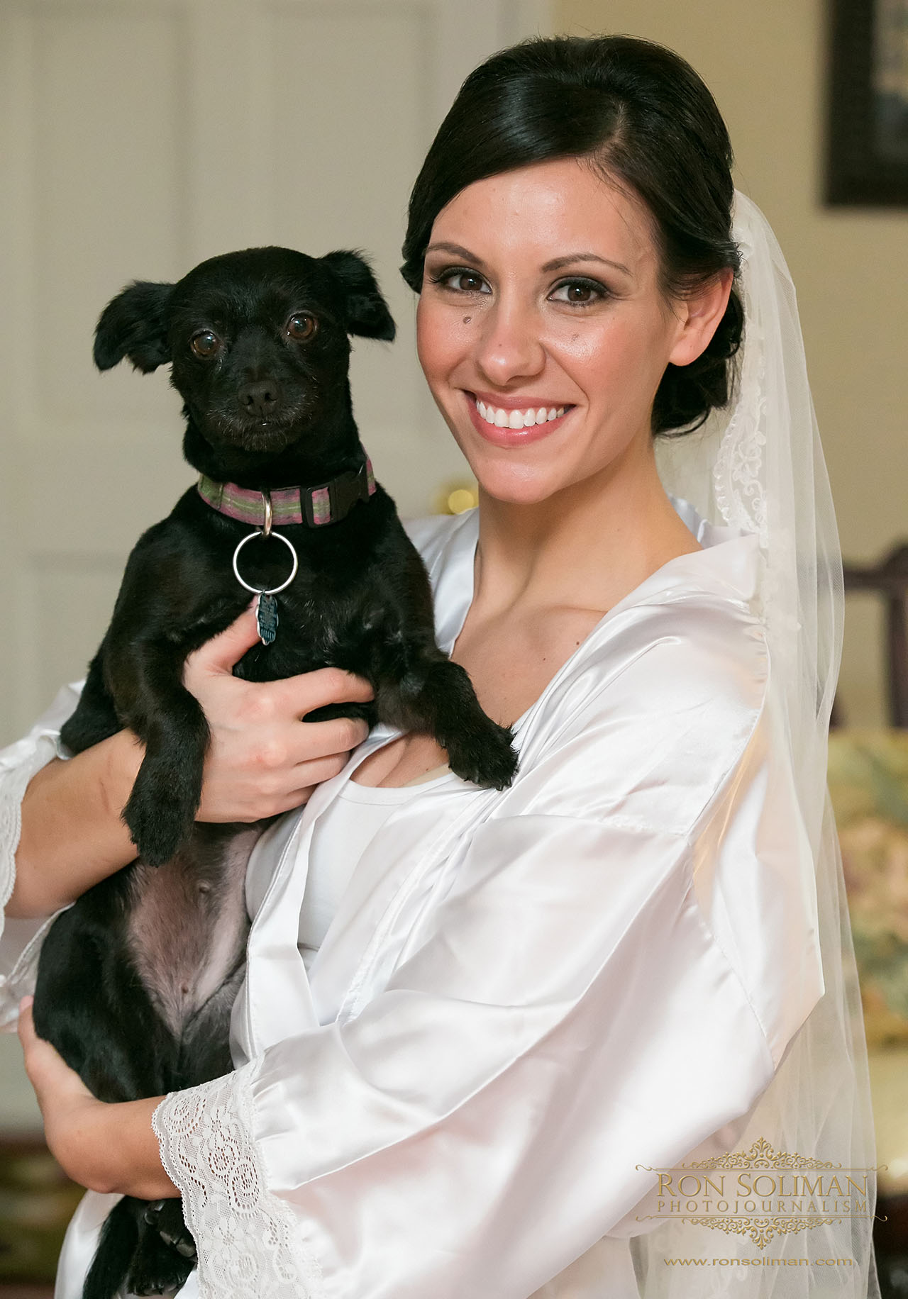 Saint Francis of Assisi Parish Springfield, PA wedding