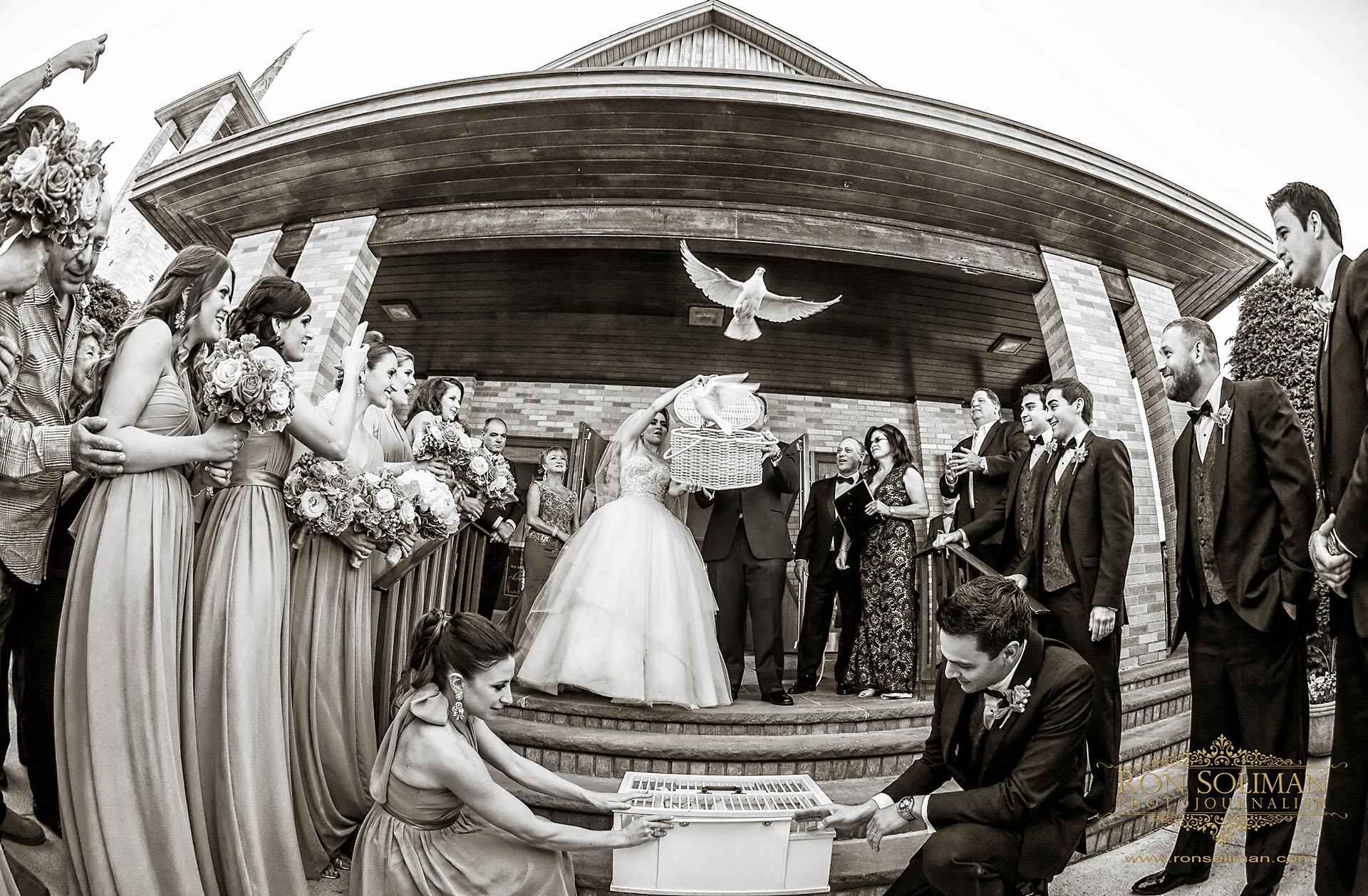 wedding doves photos