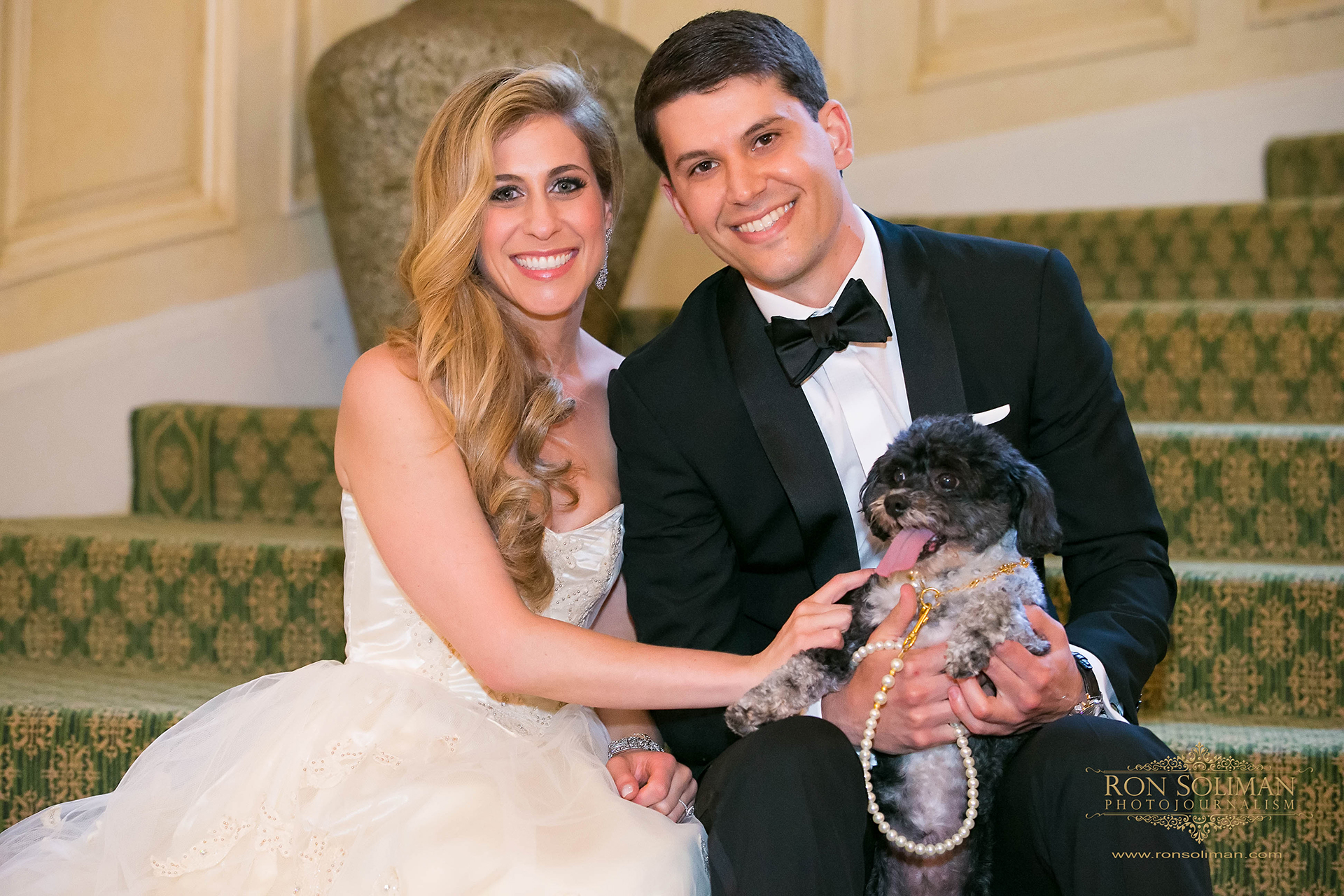 cutest pet wedding photo