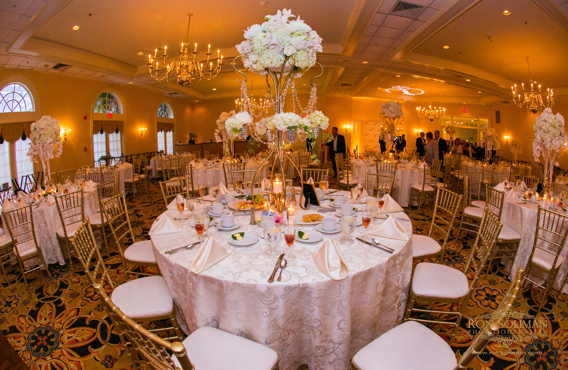 SPRING MILL MANOR WEDDING 049