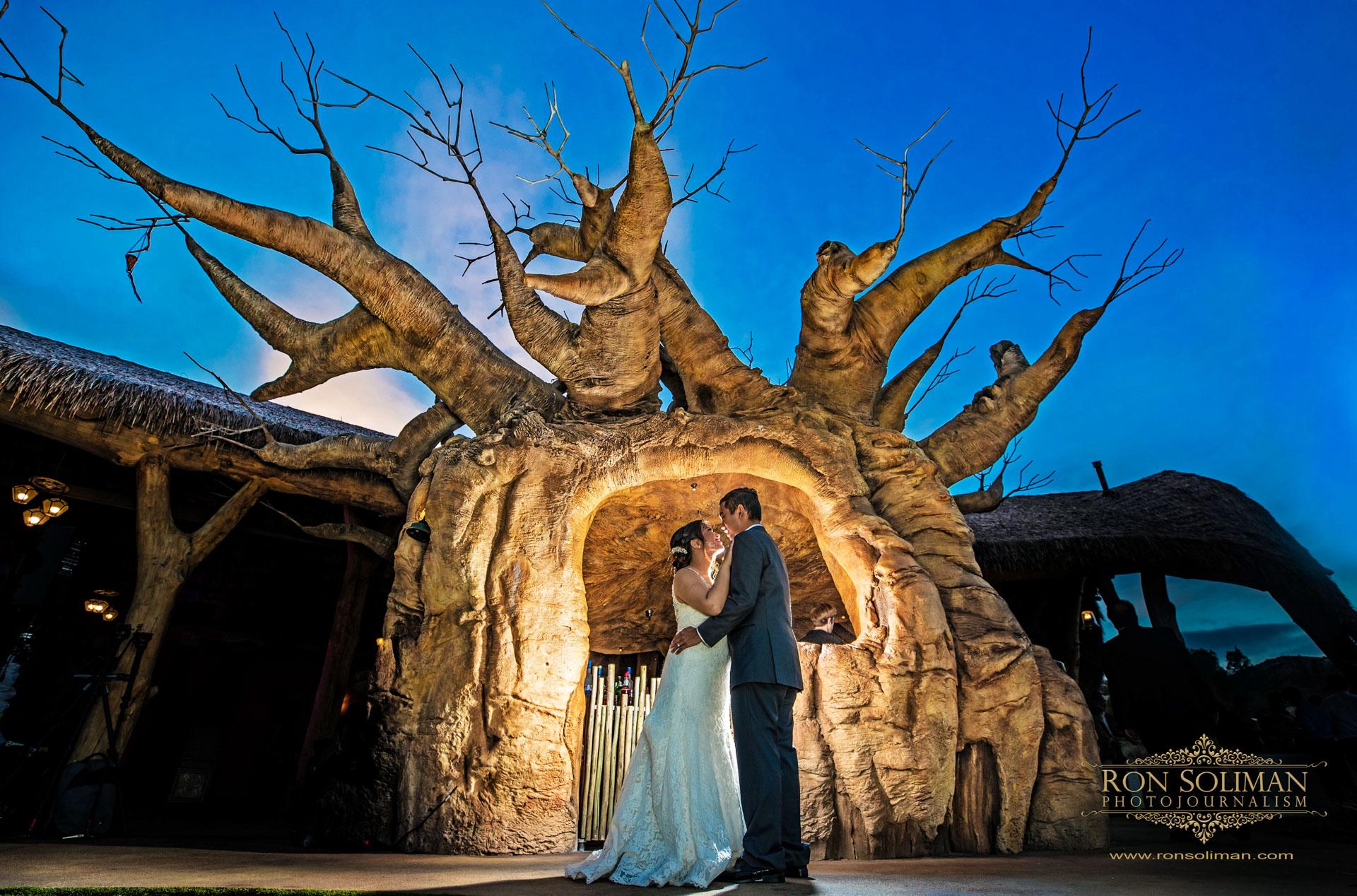 SAN DIEGO ZOO SAFARI PARK WEDDING 23