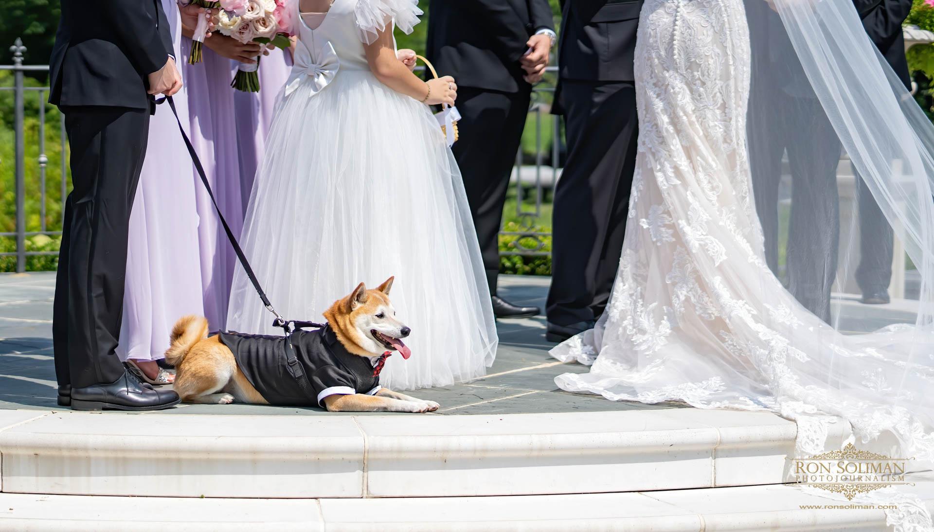 PARK CHATEAU WEDDING 325