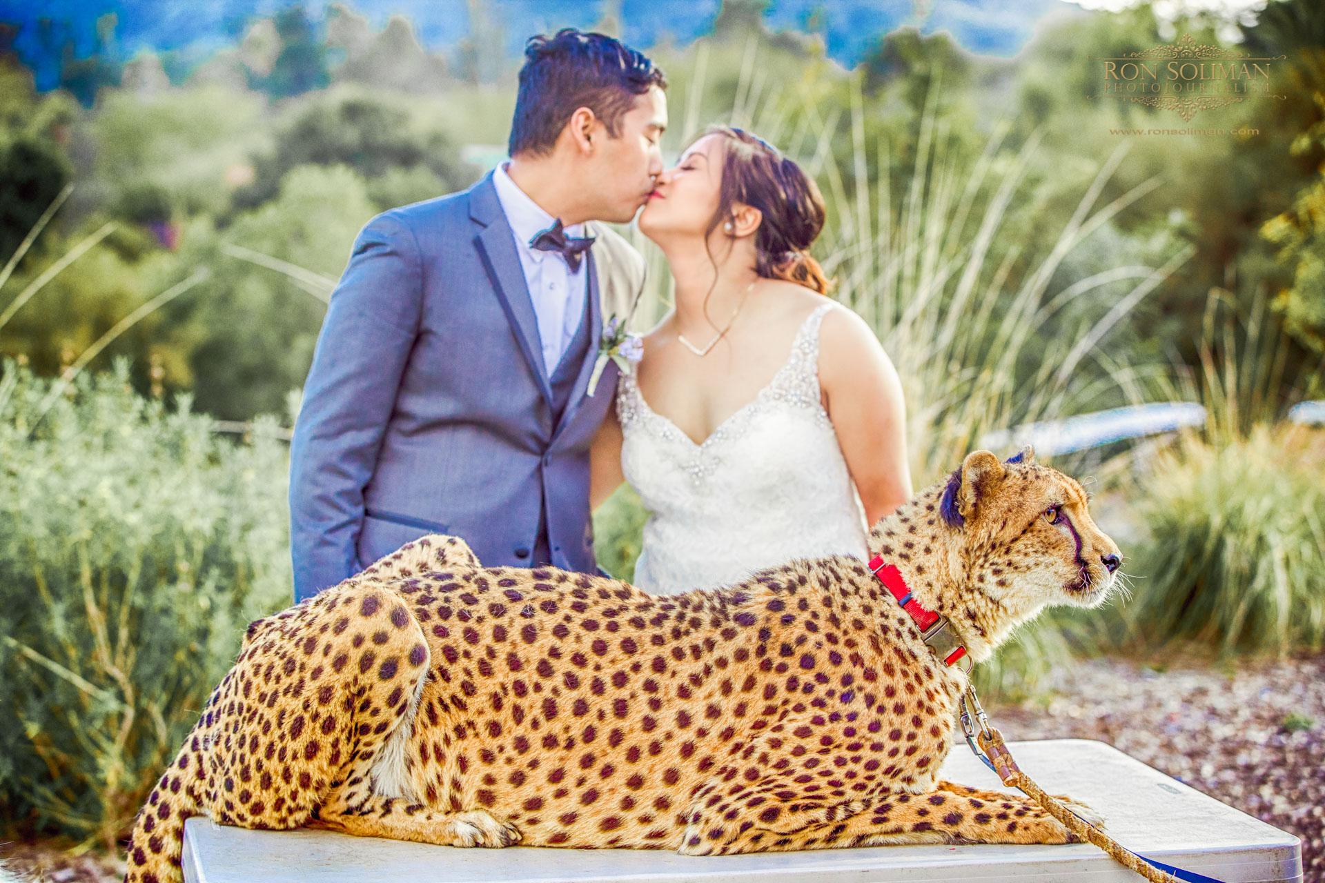 San Diego Zoo Safari Park Wedding | Jessica + Jan
